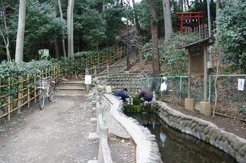 080126真姿の池湧水.JPG