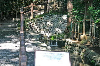 081016真姿の池湧水擁壁.JPG