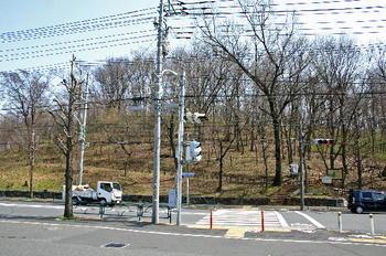 090321-02浅間山遠景.JPG