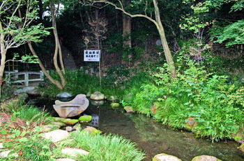 090921-08深沙大王堂裏の湧水池-2.JPG