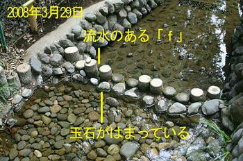 20080329第一堰裏側-2.JPG