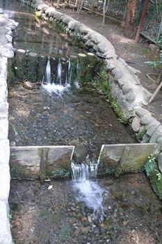 20090614-7.jpg