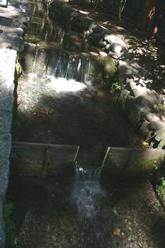 20091011-7.jpg