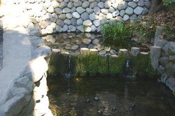 20100126-1畑中.JPG