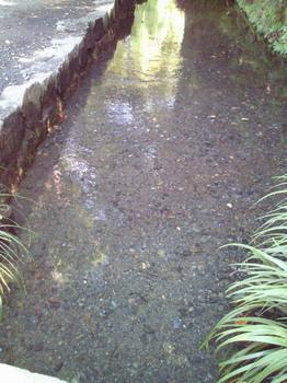 20100829干潟がない.jpg