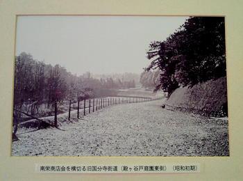 20101107旧国分寺街道(岩崎別荘東側).jpg