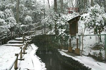 真姿の池湧水.JPG