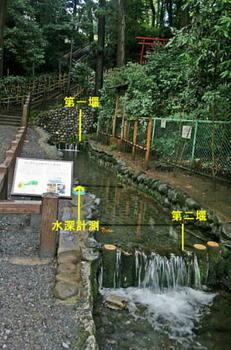 真姿の池湧水水路と堰.JPG
