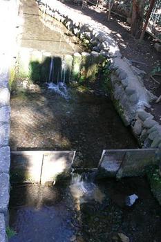 20090125-7.jpg