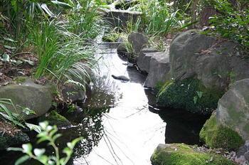 20090128弁財天池.JPG