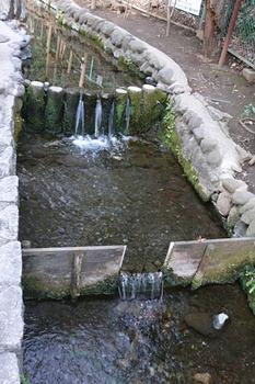 20090222-7.jpg