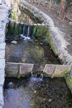 20100207-7.jpg