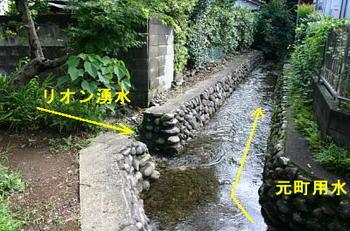 リオン湧水と元町用水.JPG